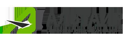 Альтаир лого